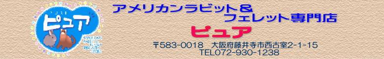 アメリカンラビット&フェレット専門店 ピユア