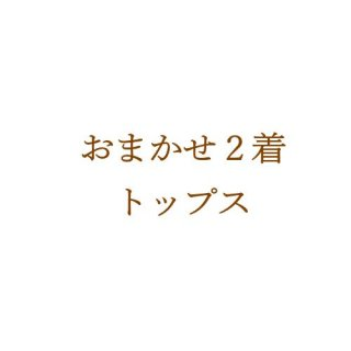 <img class='new_mark_img1' src='https://img.shop-pro.jp/img/new/icons24.gif' style='border:none;display:inline;margin:0px;padding:0px;width:auto;' />【サイズオーダー】おまかせ2着*トップス