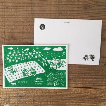 オリジナルポストカード【緑】
