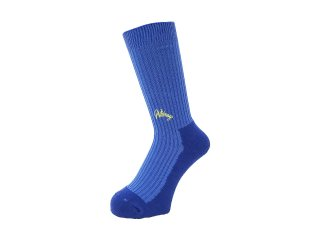<img class='new_mark_img1' src='//img.shop-pro.jp/img/new/icons5.gif' style='border:none;display:inline;margin:0px;padding:0px;width:auto;' />WHIMSY SOCKS 40/1 EMJAY SOCKS(ROYAL)