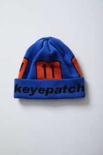 <img class='new_mark_img1' src='//img.shop-pro.jp/img/new/icons5.gif' style='border:none;display:inline;margin:0px;padding:0px;width:auto;' />ARCHIVE BEANIE(BLUE)