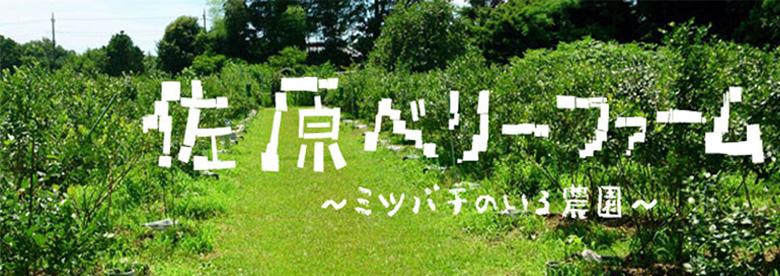 佐原ベリーファーム 〜ミツバチのいる農園〜