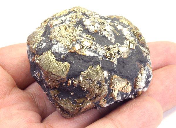 化石<br>サリグラムアンモナイトパイライト<br>エクアドル・アンデス産